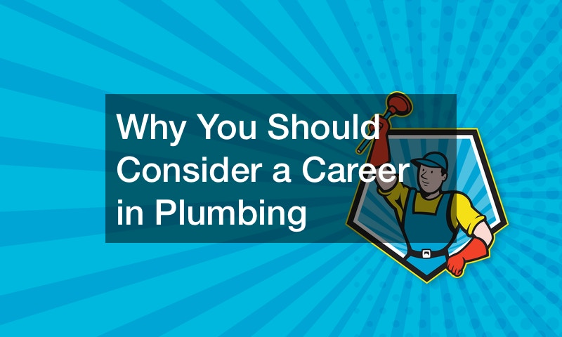 Why do I want to be a plumber